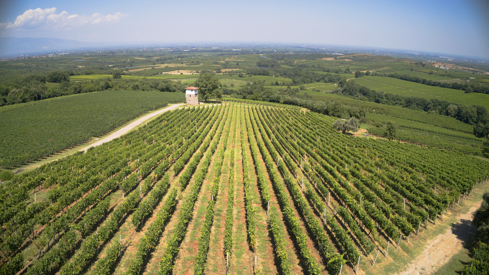Kir Yanni Winery